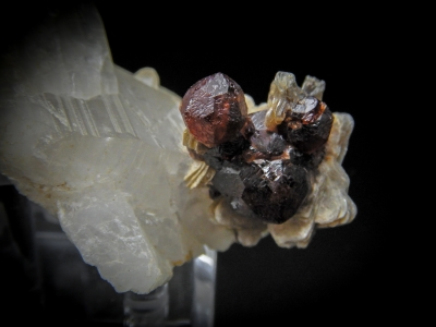 Spessartine & Muscovite on Quartz from Shigar Tal, Gilgit Division, Pakistan [db_pics/update3/ML00119b.jpg]