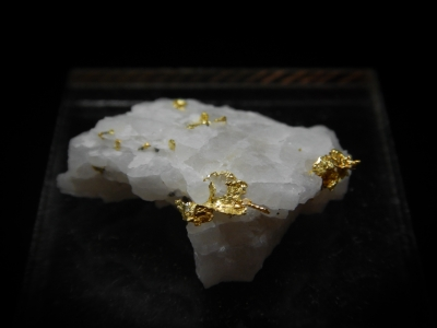 Gold from Eagles Nest Mine, Placer County, California, USA [db_pics/update4/ML00158a.jpg]