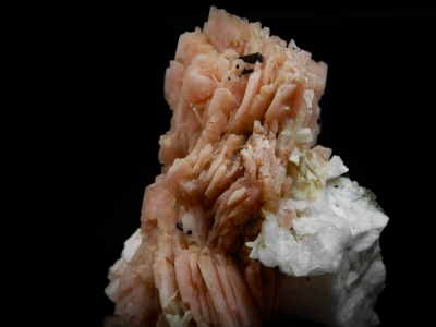 Serandite, Aegerine, Polylithionite & Microcline from Poudrette Quarry, Mt. Staint-Hilaire, Quebec, Canada [db_pics/update4/ML00183b.jpg]