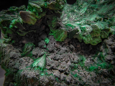 Malachite from Miringi Mine, Katanga, DRC [db_pics/update4/ML00228b.jpg]