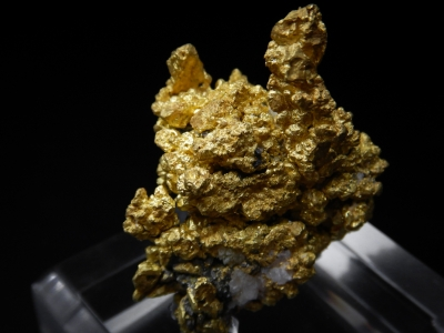 Gold from Diltz Mine, Whitlock District, Mariposa County, California, USA [db_pics/update4/ML00243a.jpg]