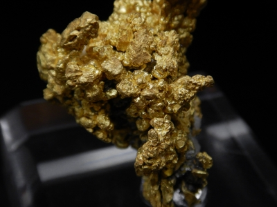 Gold from Diltz Mine, Whitlock District, Mariposa County, California, USA [db_pics/update4/ML00243c.jpg]