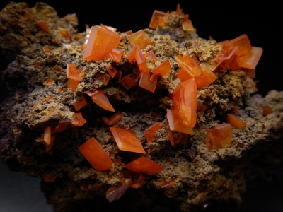 Wulfenite from Mammoth-Saint Anthony Mine, Tiger, Pinal County, Arizona, USA [db_pics/update4/ML00247b.jpg]