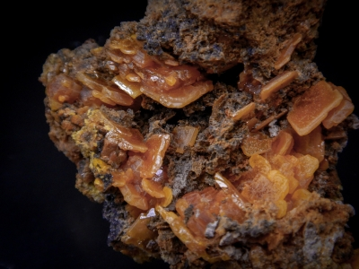 Wulfenite from Mobile Mine, Goodsprings, Clark County, Nevada, USA [db_pics/update5/ML00272b.jpg]