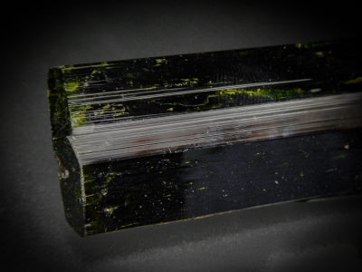 Epidote from Northern Frontier District, Kenya [db_pics/update5/ML00302c.jpg]