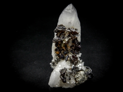 Semseyite & Chalcopyrite on Quartz from Cavnic, Crisana-Maramures, Romania [db_pics/update5/ML00311a.jpg]