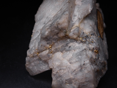 Gold in Quartz from Lydenberg, Transvaal, South Africa [db_pics/update6/ML00433b.jpg]