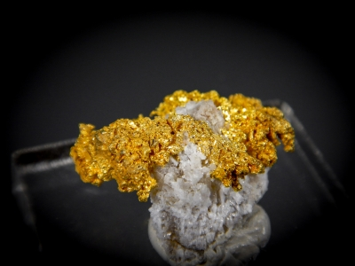 Gold from Eagles Nest Mine, Placer County, California, USA [db_pics/update7/ML00451b.jpg]