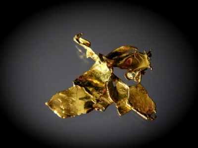 Gold from South Fork Feather River, Plumas County, California, USA [db_pics/update7/ML00471b.jpg]