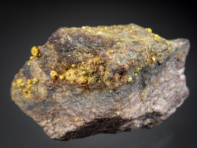 Gold (Roasted after Tellurides) from Cripple Creek District, Teller County, Colorado USA [db_pics/update7/ML00502b.jpg]