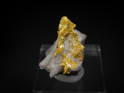 Gold from Eagles Nest Mine, Placer County, California, USA [db_pics/update7/ML00516a.jpg]