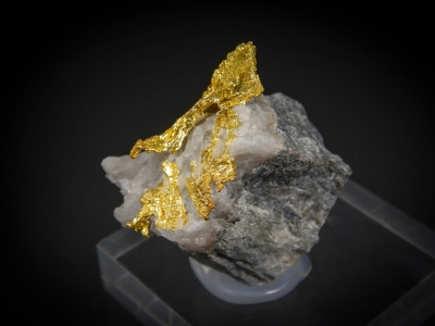 Gold from Eagles Nest Mine, Placer County, California, USA [db_pics/update7/ML00516b.jpg]