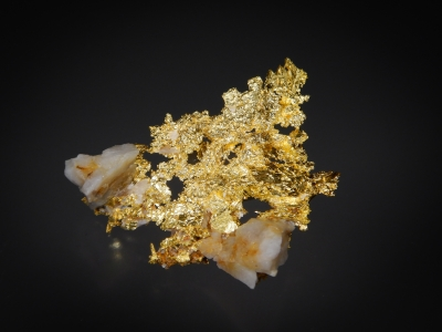 Gold from Louisiana Mine, Mariposa County, California, USA [db_pics/update7/ML00600b.jpg]