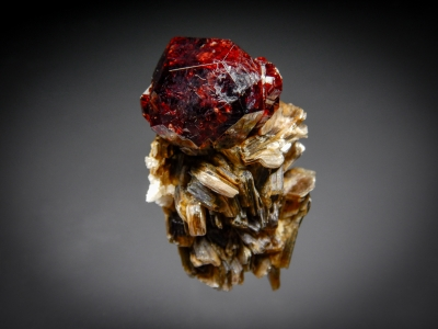 Spessartine Garnet on Muscovite from Shingus, Gilgit, Pakistan [db_pics/zowater/DZ0201a.jpg]