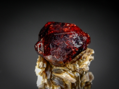 Spessartine Garnet on Muscovite from Shingus, Gilgit, Pakistan [db_pics/zowater/DZ0201b.jpg]