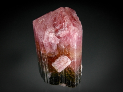 Tourmaline var. Liddicaotite from Sahatany Valley, Madagascar [db_pics/zowater/DZ1102b.jpg]