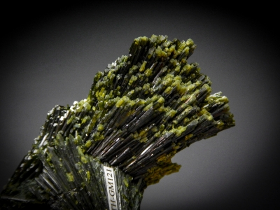 Epidote from Green Monster Mountain, Prince of Wales Island, Alaska USA [db_pics/zowater/DZ4507c.jpg]