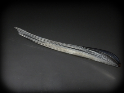 Hematite Feather from Montreal Mine, Iron County, Wisconsin USA [db_pics/zowater/DZ4509b.jpg]