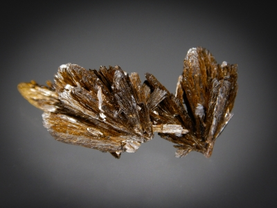 Goethite from Lake George, Park County, Colorado USA [db_pics/zowater/DZ4711a.jpg]